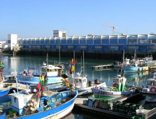 Les Sables d'Olonne Agglomération : un territoire tourné vers la mer et ses ressources